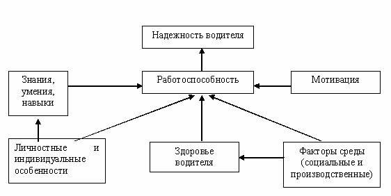 Модель деятельности водителя.